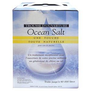 Trousse d'ouverture pour piscine au sel